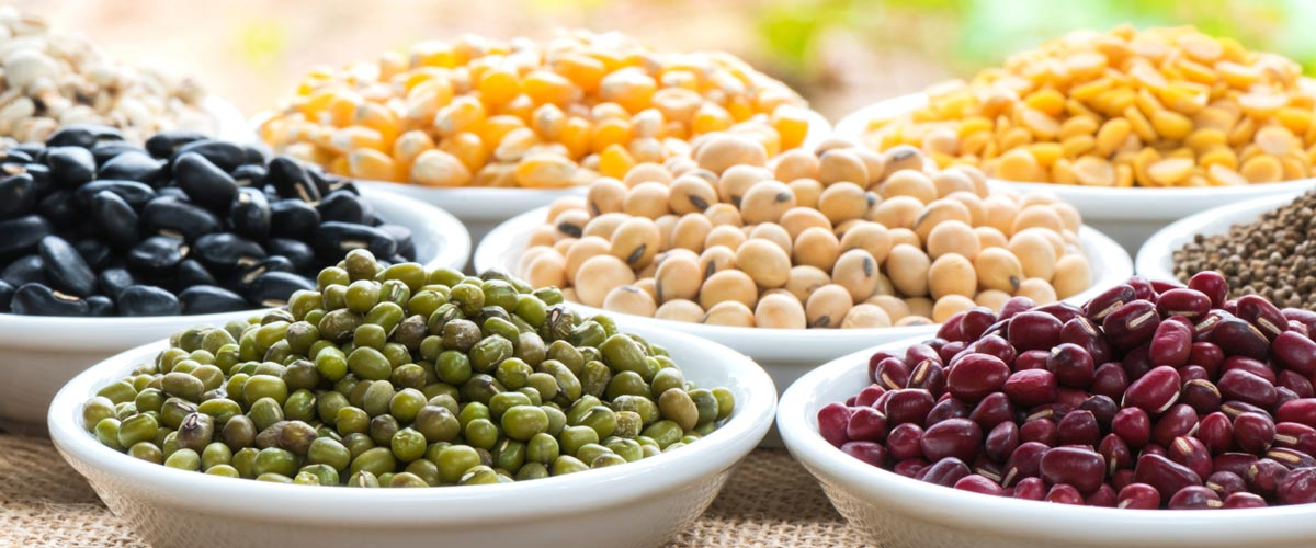 whole-grains-and-legumes