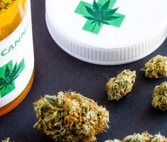 Marijuana Effects on Mental Health and How to Prevent Them